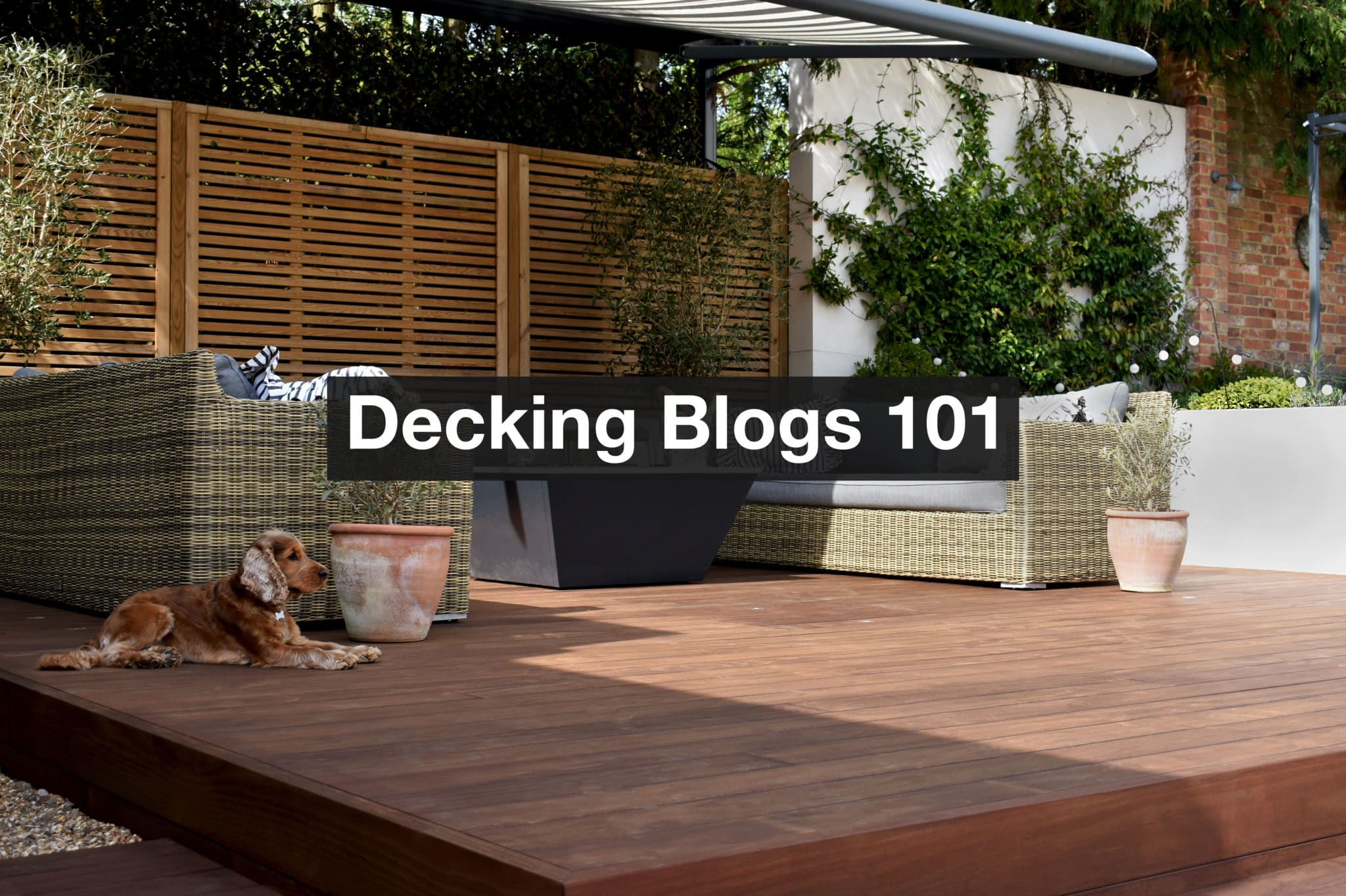 How to write a successful blog on the Decking Network