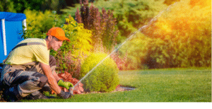 Automatic Garden Watering Buckinghamshire